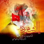 Moharram Wallpaper: Haram of Imam and mixed with Zoljanah
